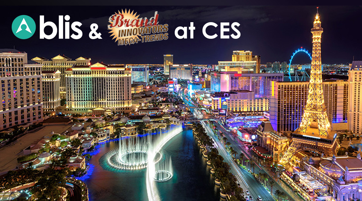 Brand Innovators CES MegaTrends Summit