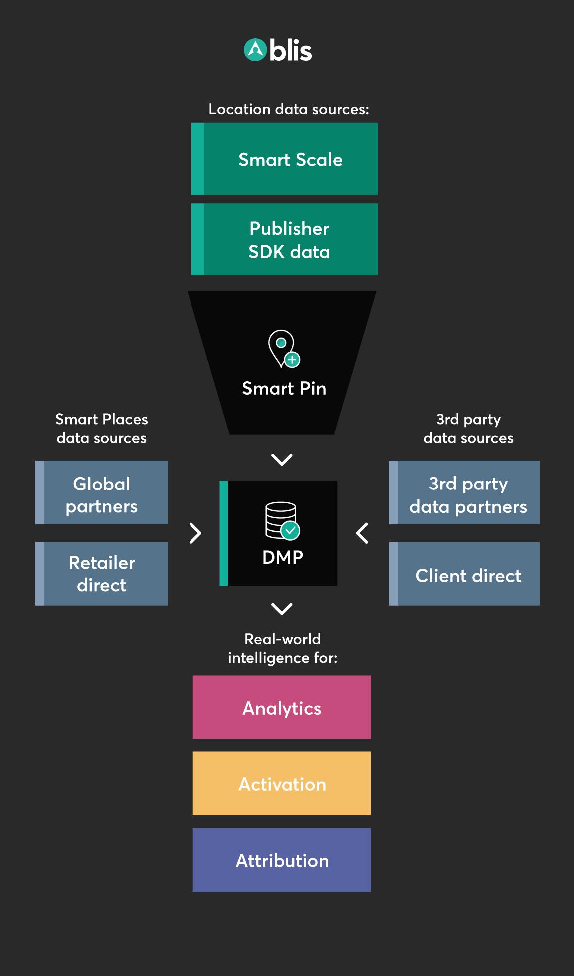 Blis DMP process chart