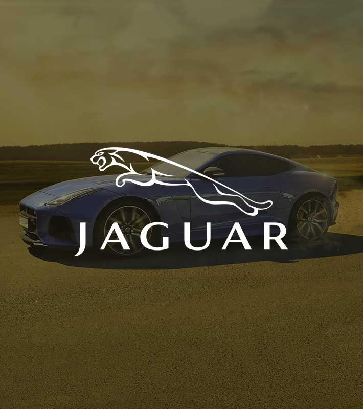 Jaguar-thumbnails